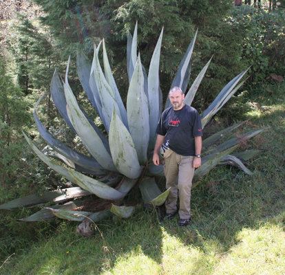 Agave atrovirens var. mirabilis and Paul Spracklin, Las Vigas